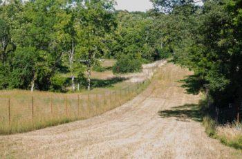 Gravel lane at Quiet Harmony Ranch