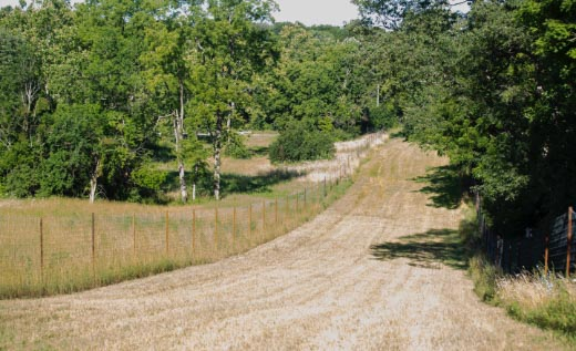 Gravel lane at Quiet Harmony Ranch